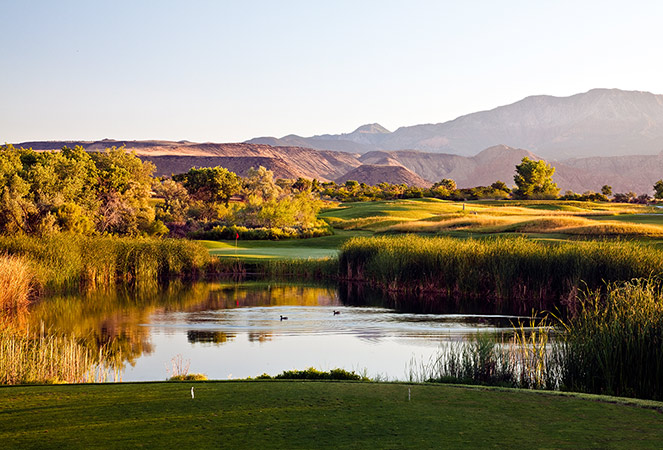 15 Tee @ Green Spring Golf Course - St. George Utah Golf - Photo By - Brian Oar - @brianoar